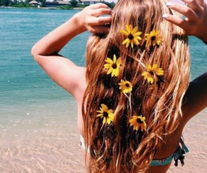 beautiful, flower, and summer image