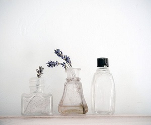 bottle, flowers, and photography image