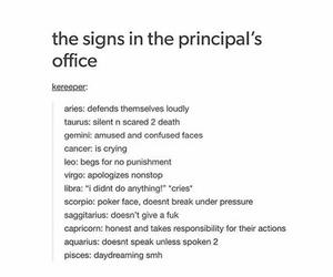 zodiac and principel image