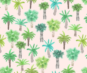 beach, palm, and pattern image
