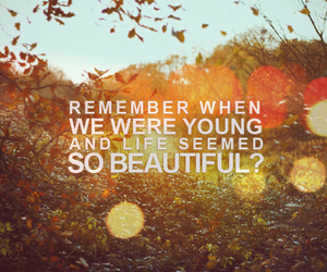 beautiful, quote, and life image