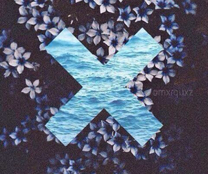 wallpaper, flowers, and x image