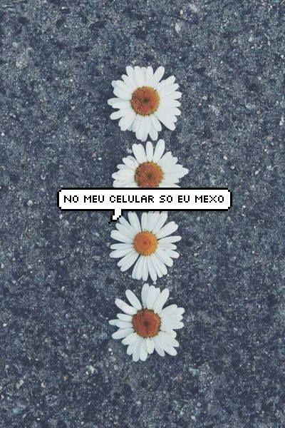 flowers, white, and balãozinho image