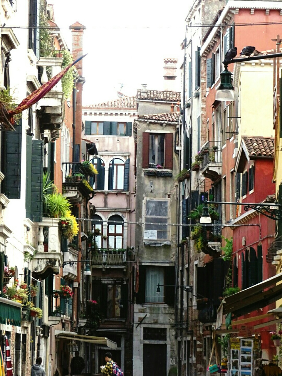 alley, color, and italy image