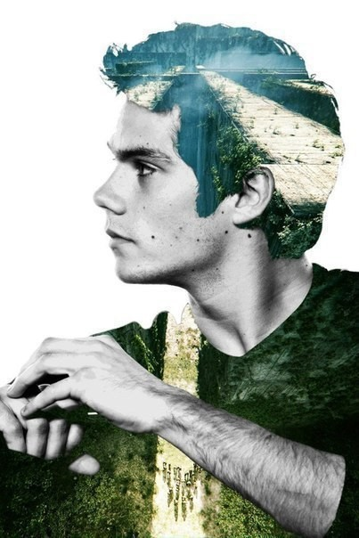 dylan o'brien, the maze runner, and maze runner image