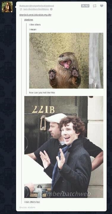 funny, sherlock, and benedict cumberbatch image