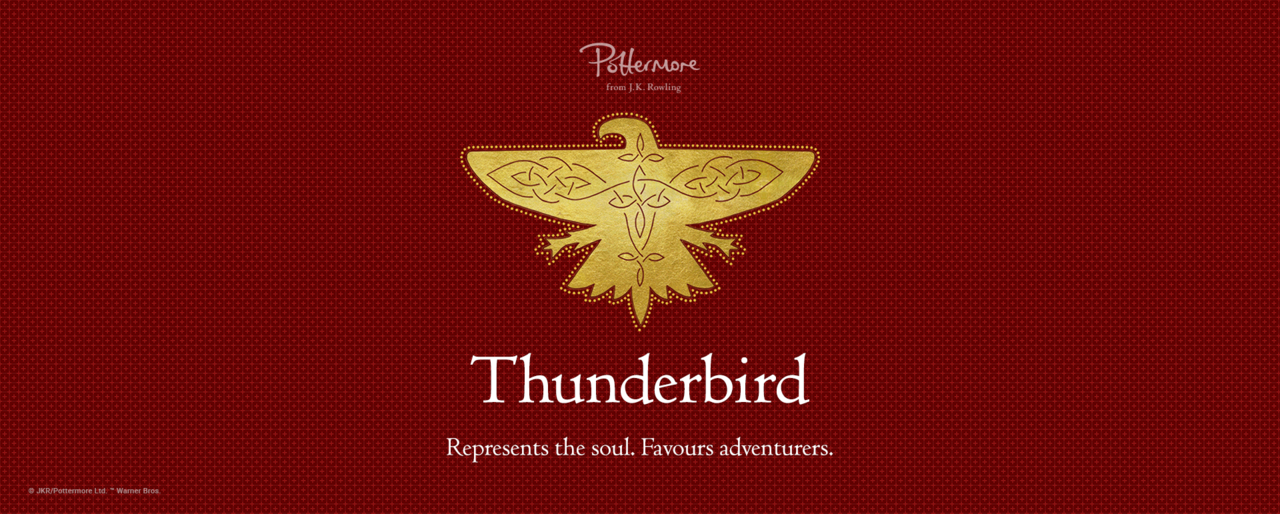 harry potter, thunderbird, and ilvermorny image