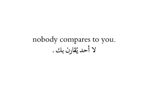 love, quotes, and nobody image