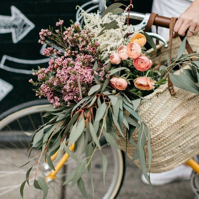 basket, bicycles, and bouquet image