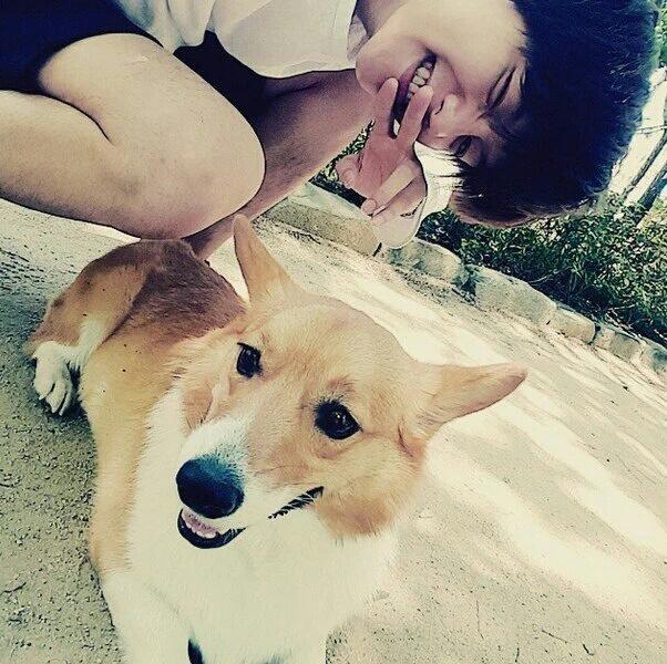 exo, baekhyun, and dog image