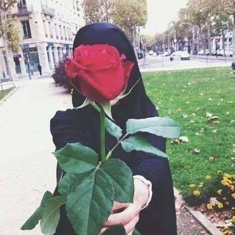 rose, hijab, and muslim image