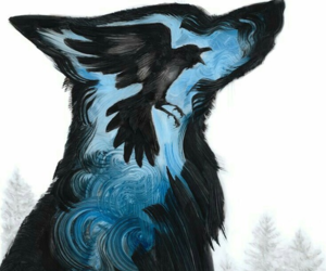 wolf, art, and bird image