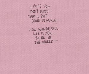 quotes, world, and pink image
