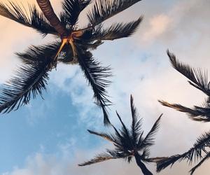 hawaii, life, and Oahu image