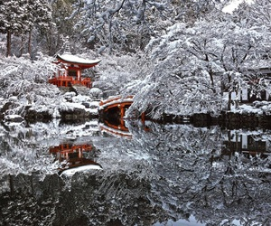 beauty, japan, and snow image