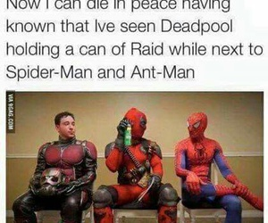 deadpool, funny, and spiderman image