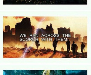 book, quote, and the maze runner image