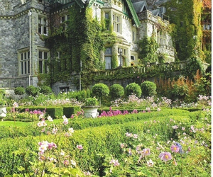 castle, house, and flowers image