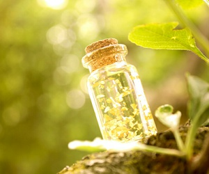 glass bottles, magic, and fairy dust image