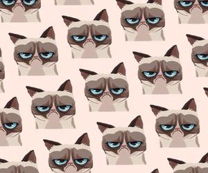 pattern, wallpaper, and grumpy cat image