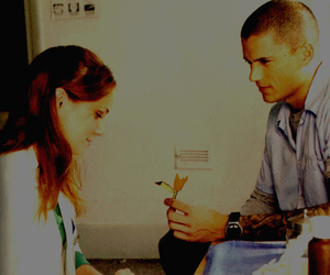 prison break, flower, and wentworth miller image