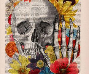 skull and skeleton image