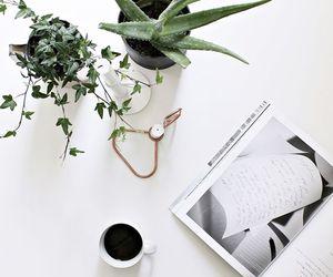 white, minimal, and coffee image