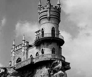 black, white, and swallow's nest image
