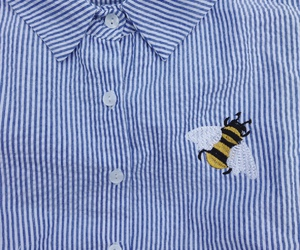 theme, bee, and blue image