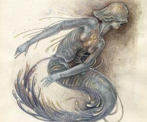 mermaid, sea creature, and siren image