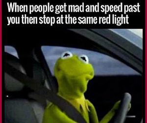 funny, funny pics, and kermit the frog image