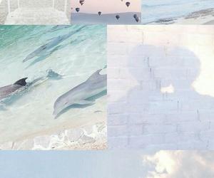 balloon, dolphin, and mood board image