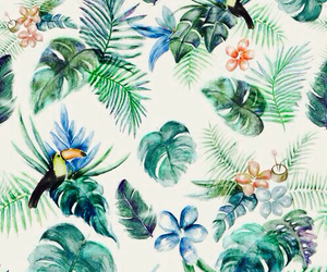 wallpaper, background, and tropical image