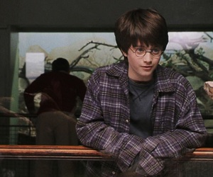 harry potter, snake, and daniel radcliffe image