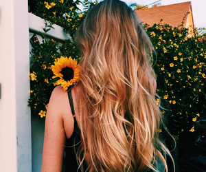 blonde, girl, and sunflower image