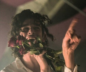 the 1975, matty healy, and roses image
