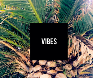 vibes, beach, and summer image
