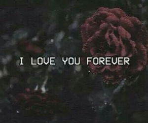 love, rose, and forever image