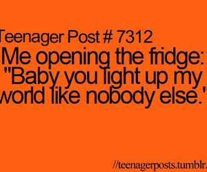funny, food, and fridge image