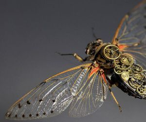 mechanical, insect, and steampunk image