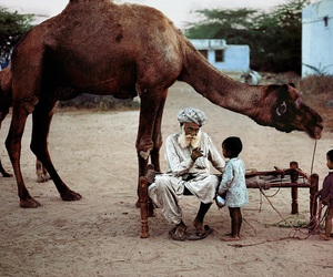 camel, child, and man image
