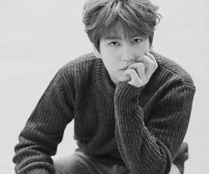 kyuhyun, super junior, and super junior kyuhyun image
