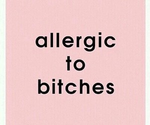 bitch, allergic, and pink image