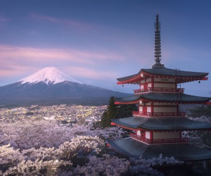 japan, beautiful, and mountains image