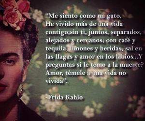 love and Frida image