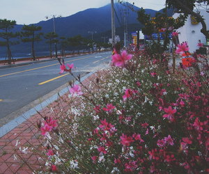 flowers, mountains, and road image