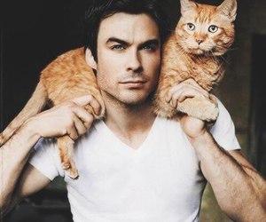 ian somerhalder, cat, and tvd image