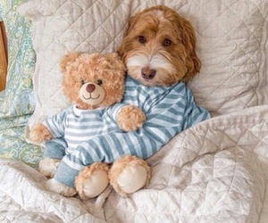 bedtime, blue, and cute image