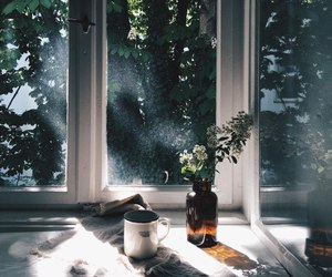 flowers, window, and coffee image