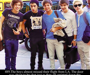funny, lol, and onedirection image